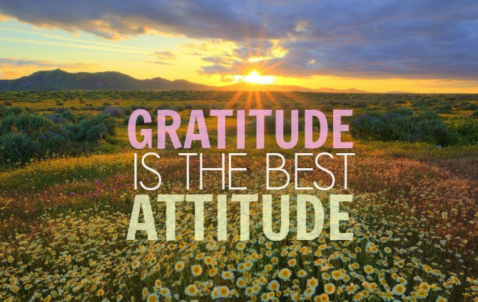 being-gratitude-is-the-best-atttude-in-life-dp-for-whatsapp